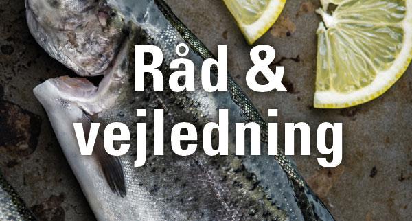 Meget mere fisk dating service